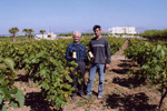 At the Wine-yard of Hatziemmanouil.